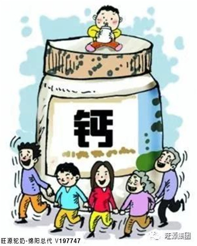 糖尿病友补钙,就选骆驼奶!