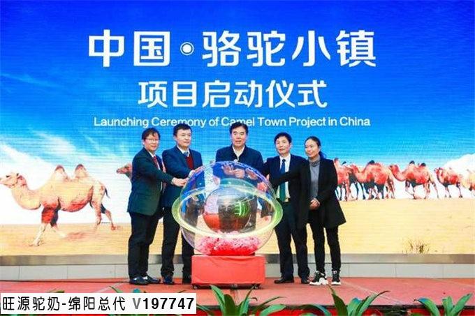 今日头条丨第六届中国骆驼产业发展大会暨首届中国骆驼文化节