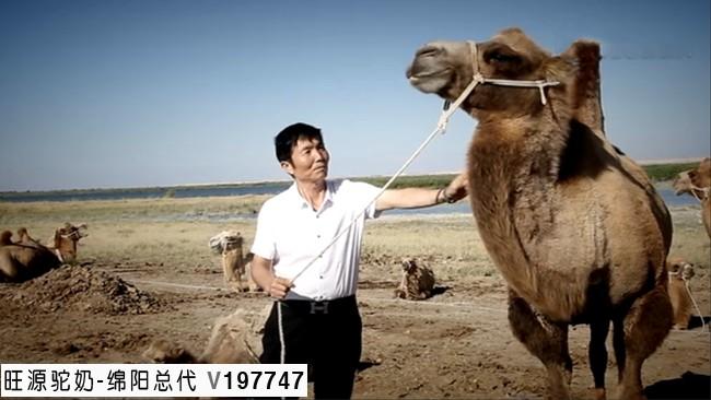 陈钢粮被评为福海县