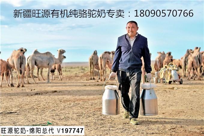 骆驼食材之阿魏草有什么药用功效