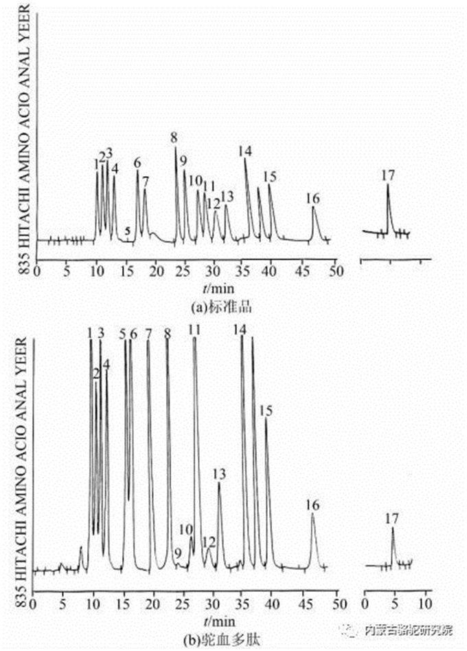 旺源骆驼奶绵阳总代理为您提供:驼血多肽的氨基酸含量分析