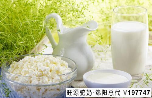 旺源骆驼奶绵阳总代理为您提供:驼乳不同于牛乳的特性——低致敏性